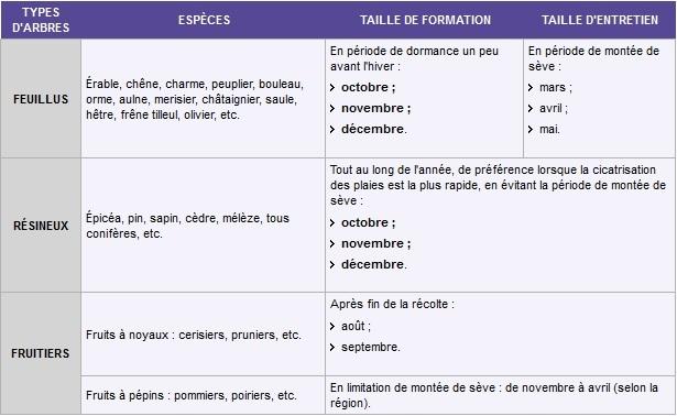 Imprimer exemple de devis d elagage for Devis elagage