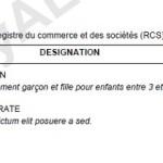 exemple de devis nettoyage pdf