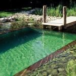 exemple de devis piscine naturelle
